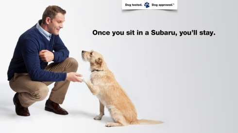 subaru-dog-tested-dog-approved-1
